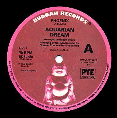 Aquarian Dream Phoenix