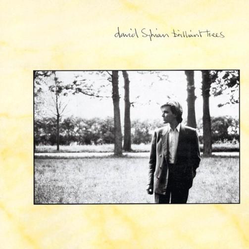 David Sylvian - Weathered Wall