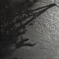 Max Richter – The Blue Notebooks