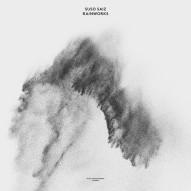 Suso Saiz – Rainworks