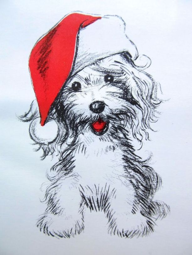 puppy in hat drawing