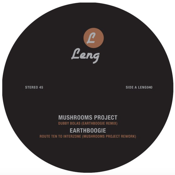 Mushrooms Earthboogie