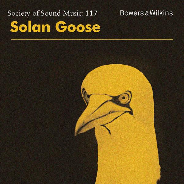 Solan Goose Art