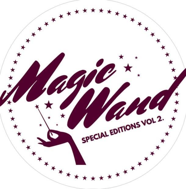 Andi Hanley Magic Wand copy