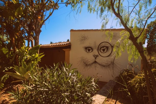 pikes ibiza cat mural copy
