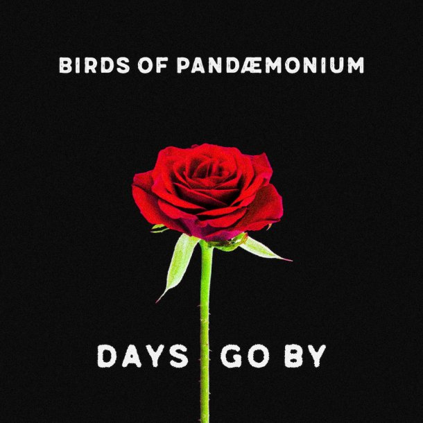 Birds Of Pandaemonium - Days Go By - A Separate Reality