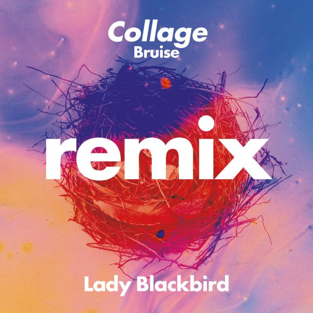 Lady Blackbird Bruise