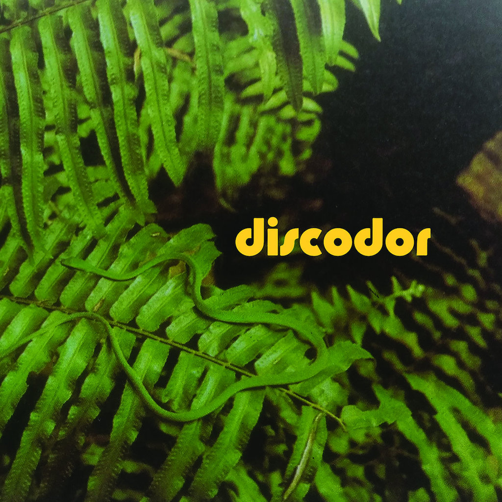 Discodor