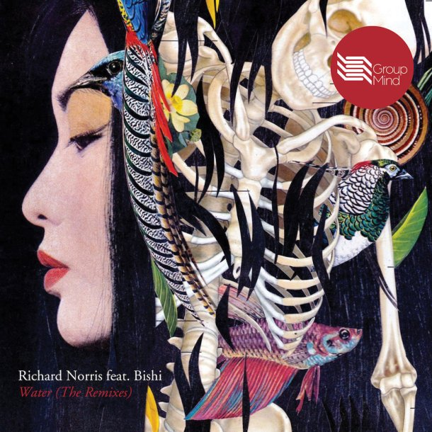 Richard Norris Water Remixes