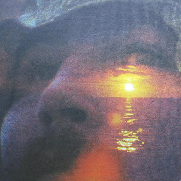 david-crosby-e28093-if-i-could-only-remember-my-name