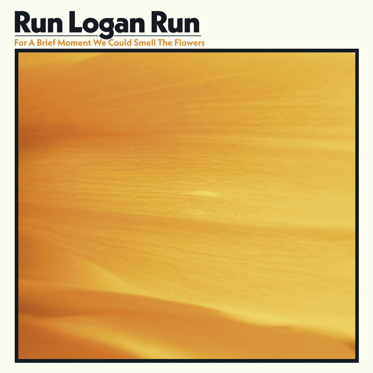 Run Logan Run : For A Brief Moment We Could Smell The Flowers